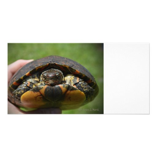 Ornate wood turtle in hand customized photo card