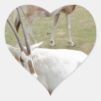 Oryx Heart Sticker