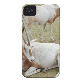 Oryx iPhone 4 Case-Mate Case