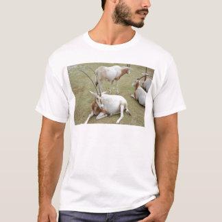 Oryx T-Shirt