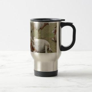 Oryx Travel Mug