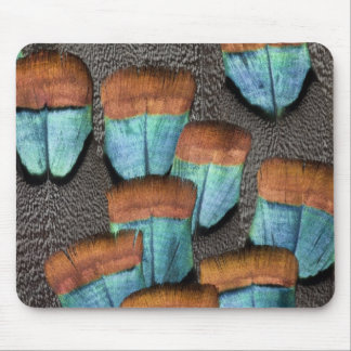 Oscillated Turkey feather pattern Mouse Pad