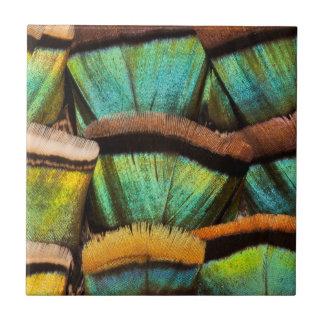 Oscillated Turkey feathers Ceramic Tile