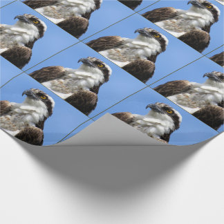 Osprey (4964) Wrapping Paper