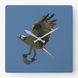 Osprey Bird Fish Wildlife Animal Wall Clock