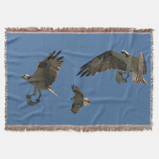 Osprey Birds Wildlife Animal Flying Throw Blanket