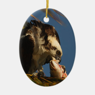 Osprey Ceramic Oval Decoration