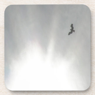 Osprey Coaster
