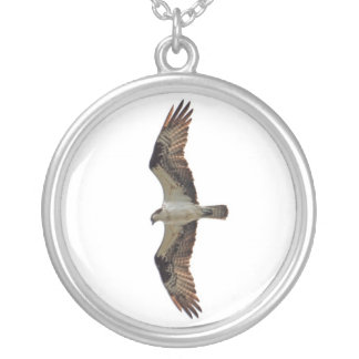 Osprey Flying Photo Silver Plated Necklace
