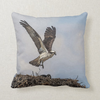Osprey in a nest cushion