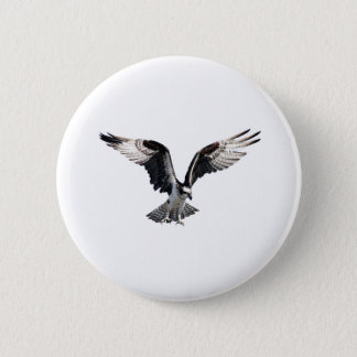 Osprey in Flight 6 Cm Round Badge