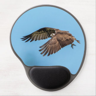 Osprey in flight at Honeymoon Island State Park Gel Mouse Pad