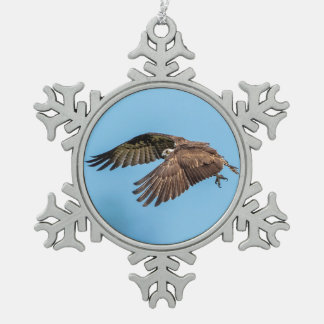 Osprey in flight at Honeymoon Island State Park Snowflake Pewter Christmas Ornament