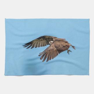 Osprey in flight at Honeymoon Island State Park Tea Towel