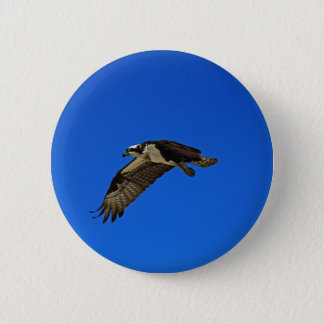 Osprey in Flight II 6 Cm Round Badge