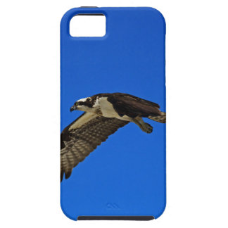 Osprey in Flight II Case For The iPhone 5