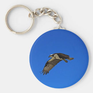 Osprey in Flight II Key Ring