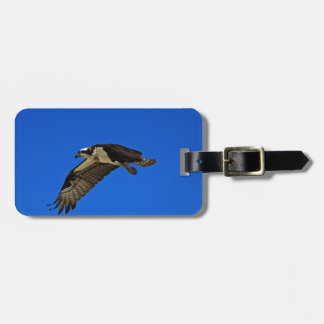 Osprey in Flight II Luggage Tag