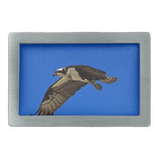 Osprey in Flight II Rectangular Belt Buckle
