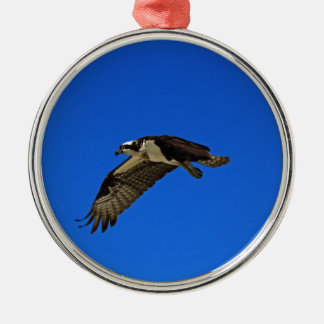 Osprey in Flight II Silver-Colored Round Decoration