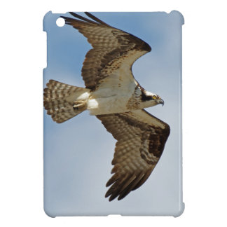 Osprey in Flight iPad Mini Cover