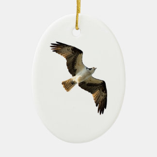 Osprey in Flight Logo Ceramic Ornament