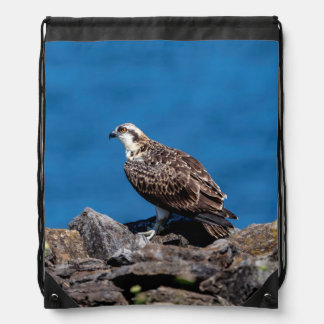 Osprey on the rocks drawstring bag