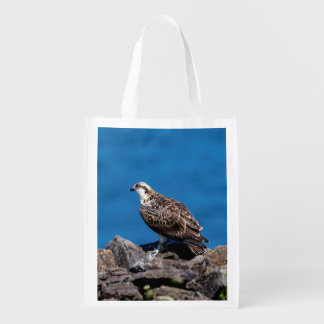 Osprey on the rocks reusable grocery bag