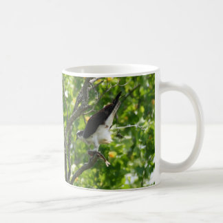 Osprey recycling project coffee mug