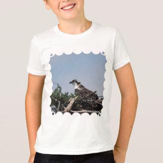 Osprey Sitting on Nest Youth T-Shirt