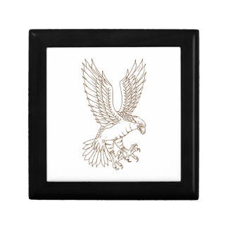 Osprey Swooping Drawing Gift Box
