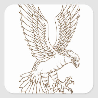 Osprey Swooping Drawing Square Sticker