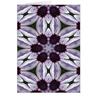 Osteospermum Abstract Greeting Card