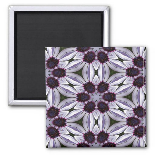 Osteospermum Abstract Magnets