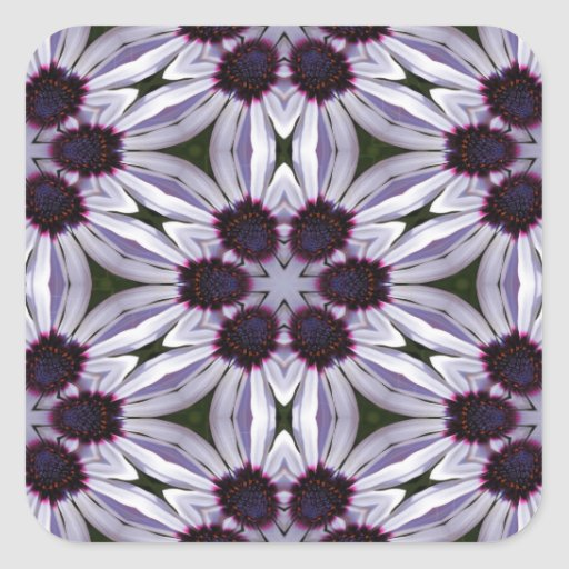 Osteospermum Abstract Stickers