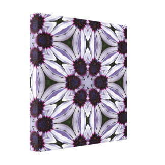 Osteospermum Abstract Wrapped Canvas Stretched Canvas Print