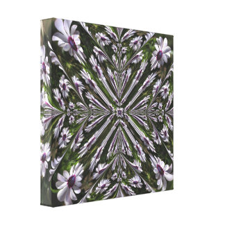 Osteospermum Abstract Wrapped Canvas Canvas Prints