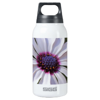 Osteospermum African Daisy 0.3L Insulated SIGG Thermos Water Bottle