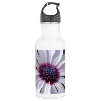 Osteospermum African Daisy 532 Ml Water Bottle