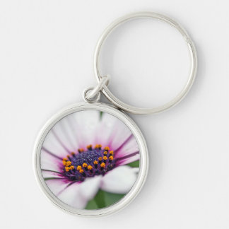 Osteospermum Daisy Macro Silver-Colored Round Key Ring