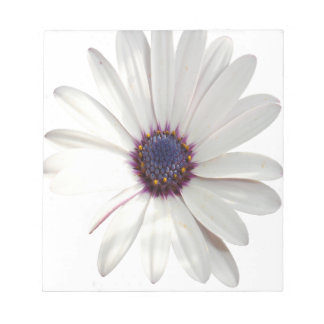 Osteospermum Daisy with Purple Centre Notepad
