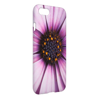Osteospermum Flower Pink Purple IPhone 8/7 Case