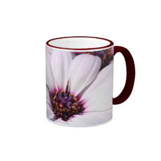 Osteospermum Ringer Mug