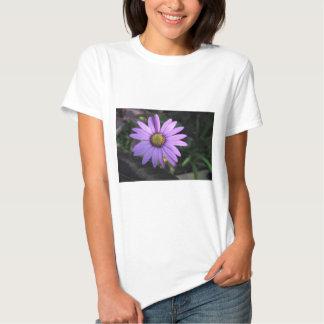 Osteospermum 'Stardust' T-Shirt