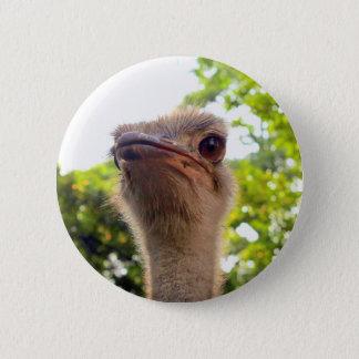 Ostrich Bird 6 Cm Round Badge