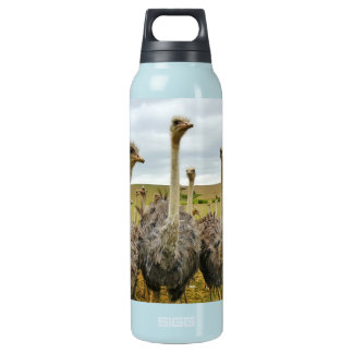 Ostrich Bird Insulated Water Bottle