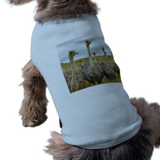 Ostrich Bird Sleeveless Dog Shirt
