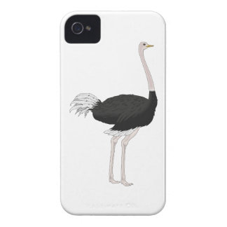 Ostrich iPhone 4 Covers