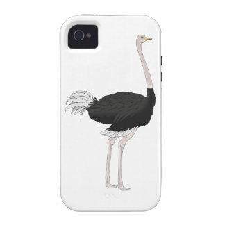 Ostrich Case-Mate iPhone 4 Case