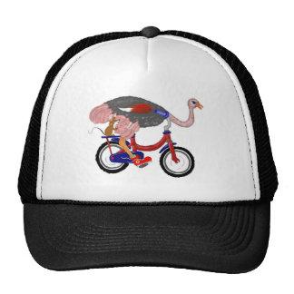 Ostrich Flight Mesh Hat